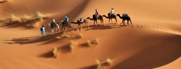 Oreiller de voyage : l'avis d'un nomade professionnel